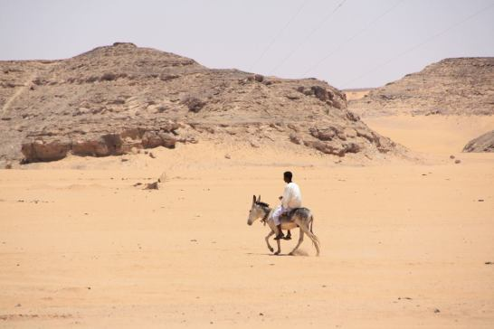 A man on a donkey in the desert near Wadi Halfa