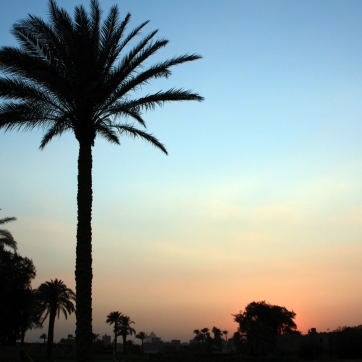 Cairo Sunset