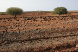 Dide Galgalu Desert