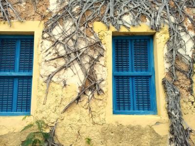 Blue windows on Changuu Island in Tanzania