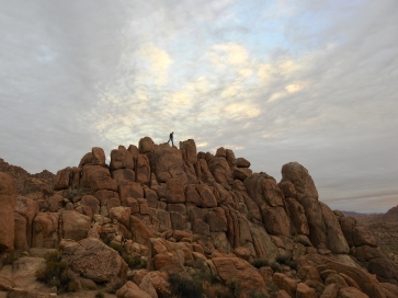 Joshua Tree National Park in southern California