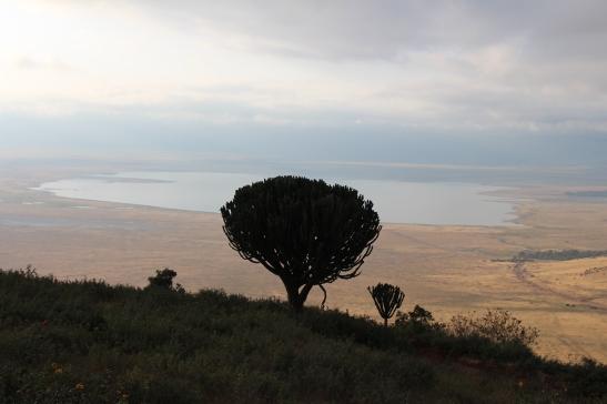 Ngorongoro Crater in Tanzania