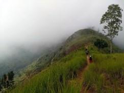 Uluguru Mountains in eastern Tanzania