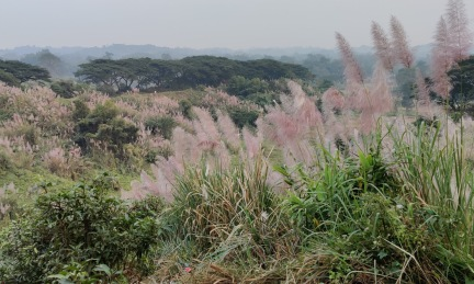 Bhatiari, Chattogram